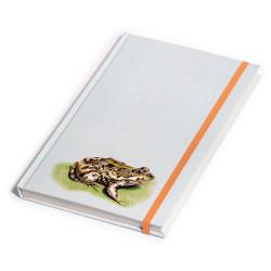 Notebook Green Frog, Parque...