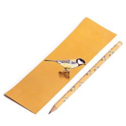 Lápis + Marcador...